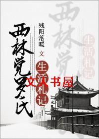 [清穿]西林觉罗氏生活札记封面